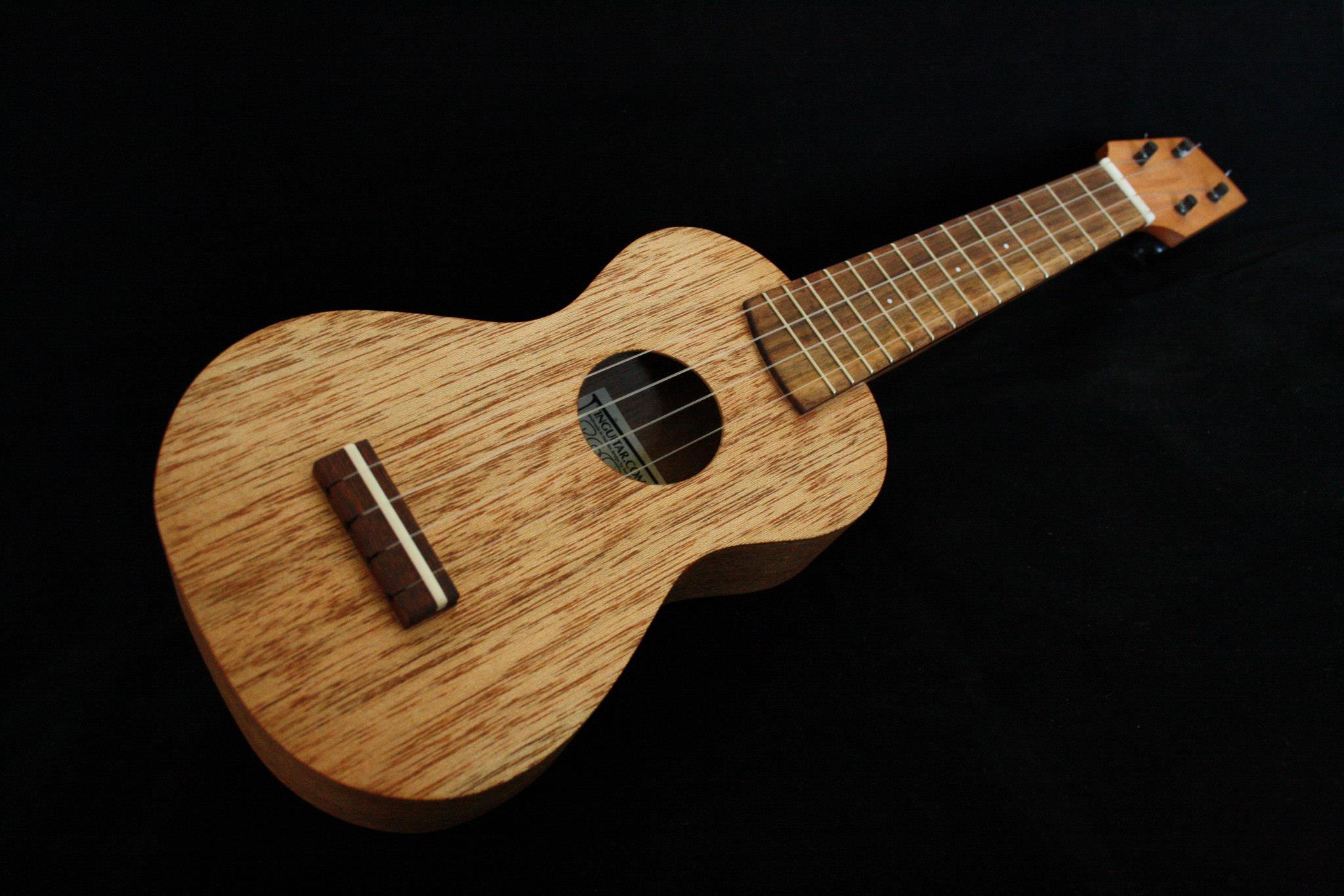 ผลการค้นหารูปภาพสำหรับ meranti wood guitar